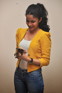 Lavanya Tripathi glamorous Pictures 020