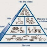 Effect of Food for People with Diabetes