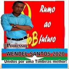 # PROFESSOR WENDEL SANTOS
