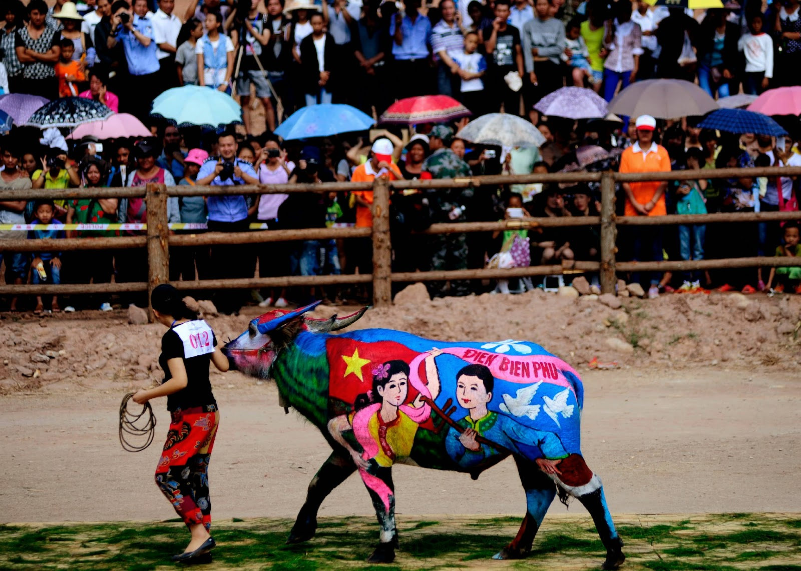 Buffalo Body-Painting Competition in Pictures
