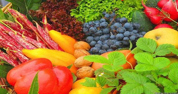 Una Buena Alimentación y Nutrición Balanceada.