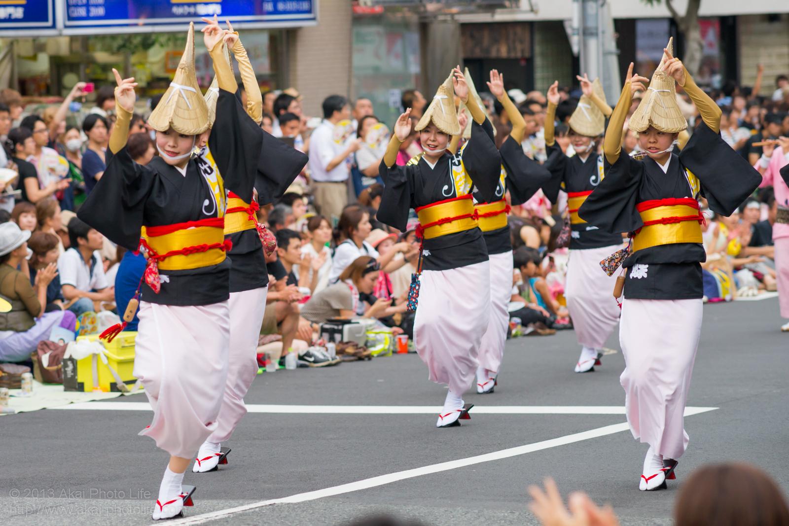 高円寺阿波踊り 舞蝶連の女踊り