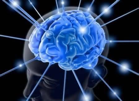 要有好的學習效能,最主要的秘訣就是「專注」!而最好的學習方法就是「禪坐」,平時多禪坐可以培養定力,久而久之,遇到任何挑戰,自然可以沉得住氣,突破各種難關。禪坐時,將訓練如何專心守竅,或全神貫注觀想身體各個部位的器官,既而開發孩子的潛能與智慧,且若能將這樣的精神力量轉移到學習上,就能轉握學習的精髓,提升學習效能! ~禪宗第八十五代宗師 悟覺妙天禪師開示