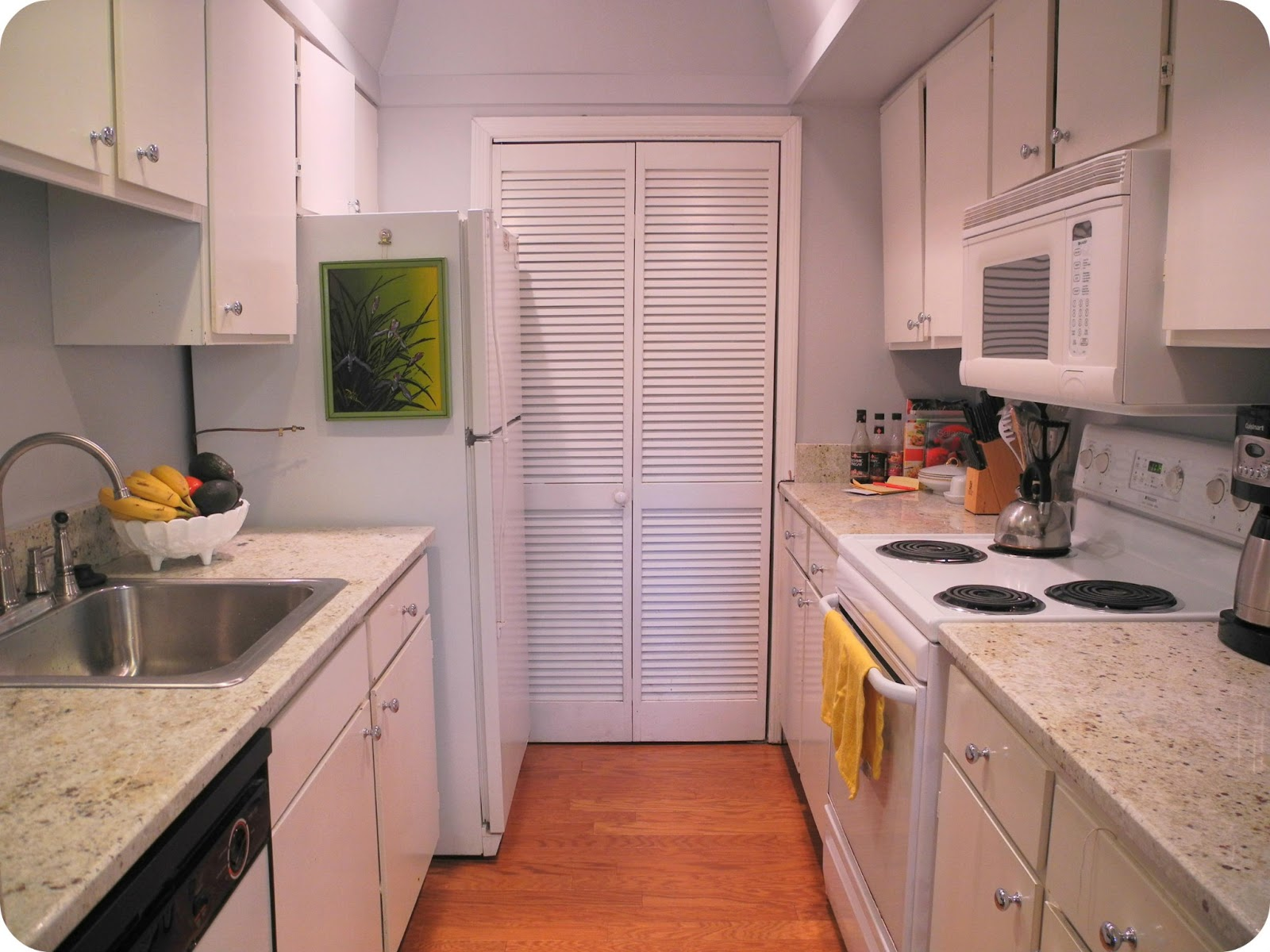 Granite Kitchen Makeovers Librarian Tells All Whats Cooler Than Bein Cool Galley Kitchen