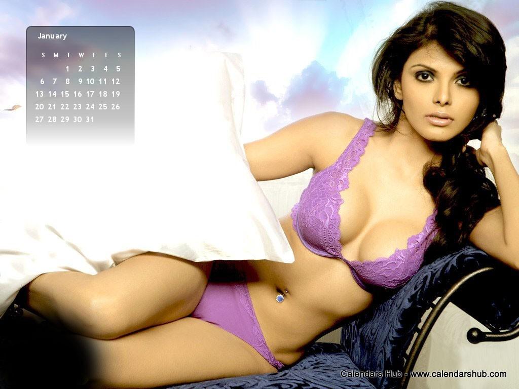 http://2.bp.blogspot.com/-hw1isTYPaGQ/UO_w9hPDA_I/AAAAAAAAD_Y/Hn_GQEixLuY/s1600/Sherlyn+Chopra+Desktop+Wallpaper+Calendar+January+2013+-+Calendarshub.com.jpg