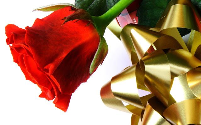hình ảnh về tình yêu đẹp lãng mạn dễ thương, hoa hồng