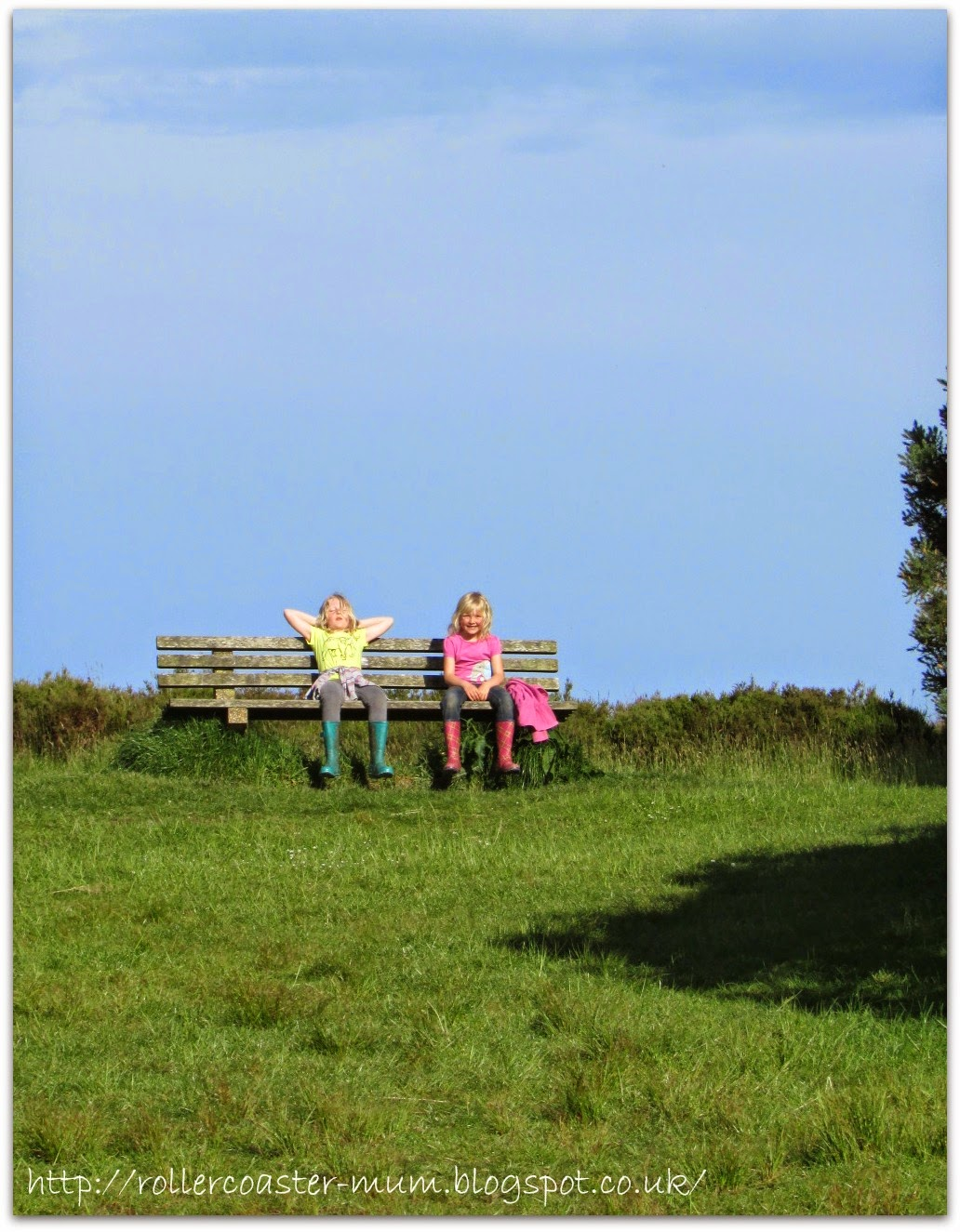 On top of the world, Ashdown Forest