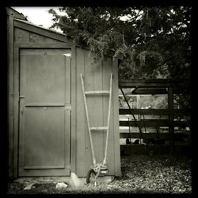 chicken coop photograph by karri allrich