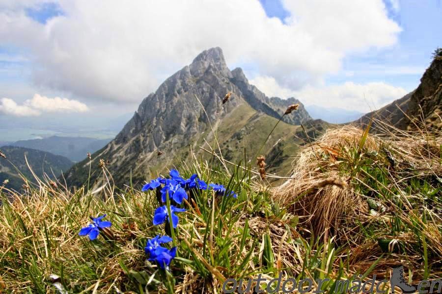 Gehrenspitze Tirol