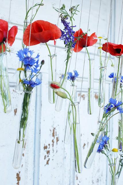 maki, chabry, kwiaty polne, probówka