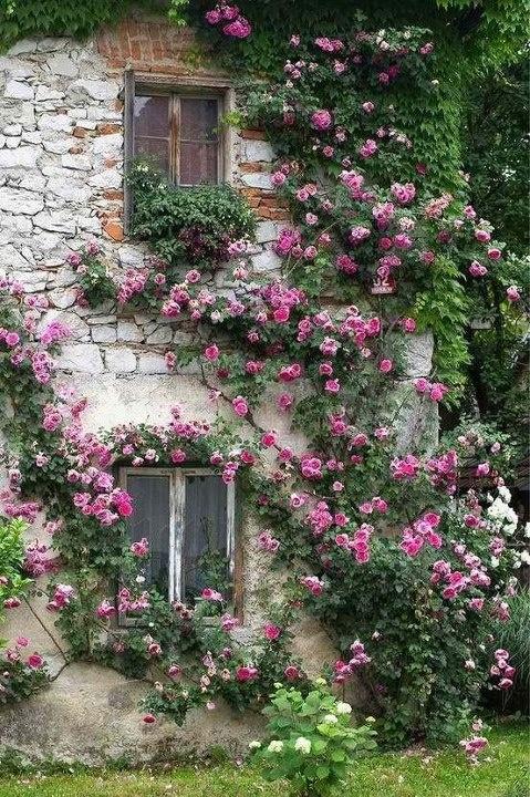10 Jardines de ensueño