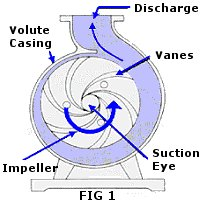 draw the centrifugal pump diagram and show the impeller and fluid rh engineeringoperations blogspot com