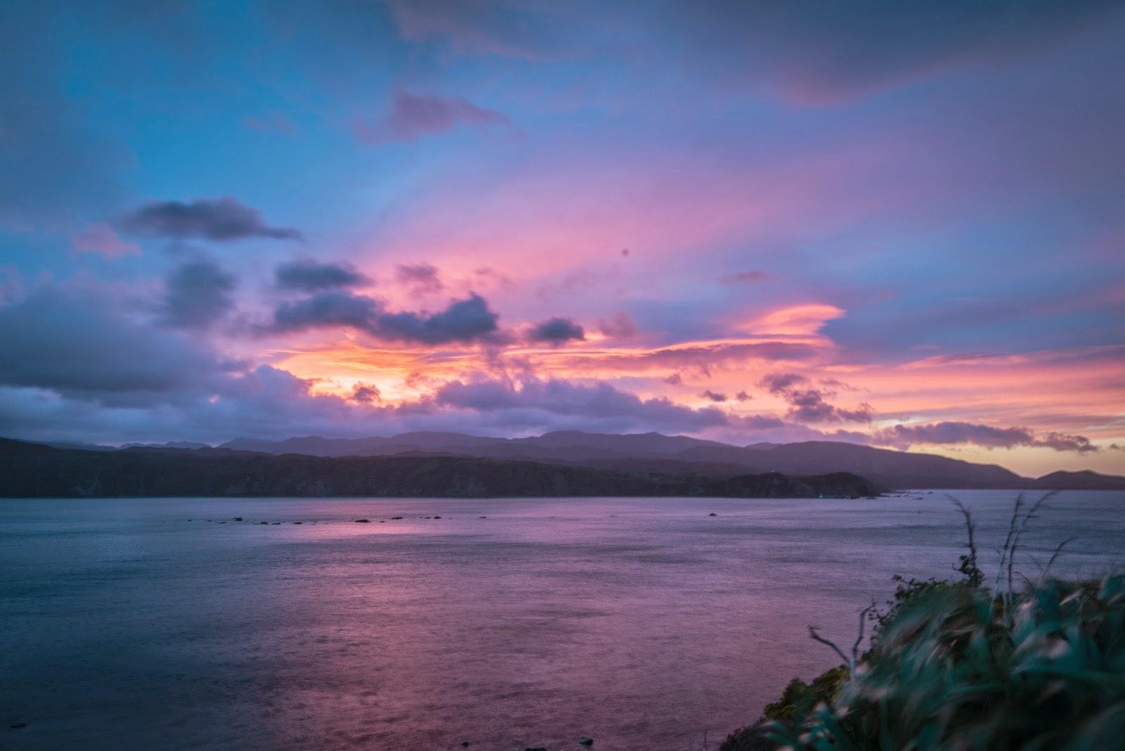 Pink sky sunrise Wellington harbour