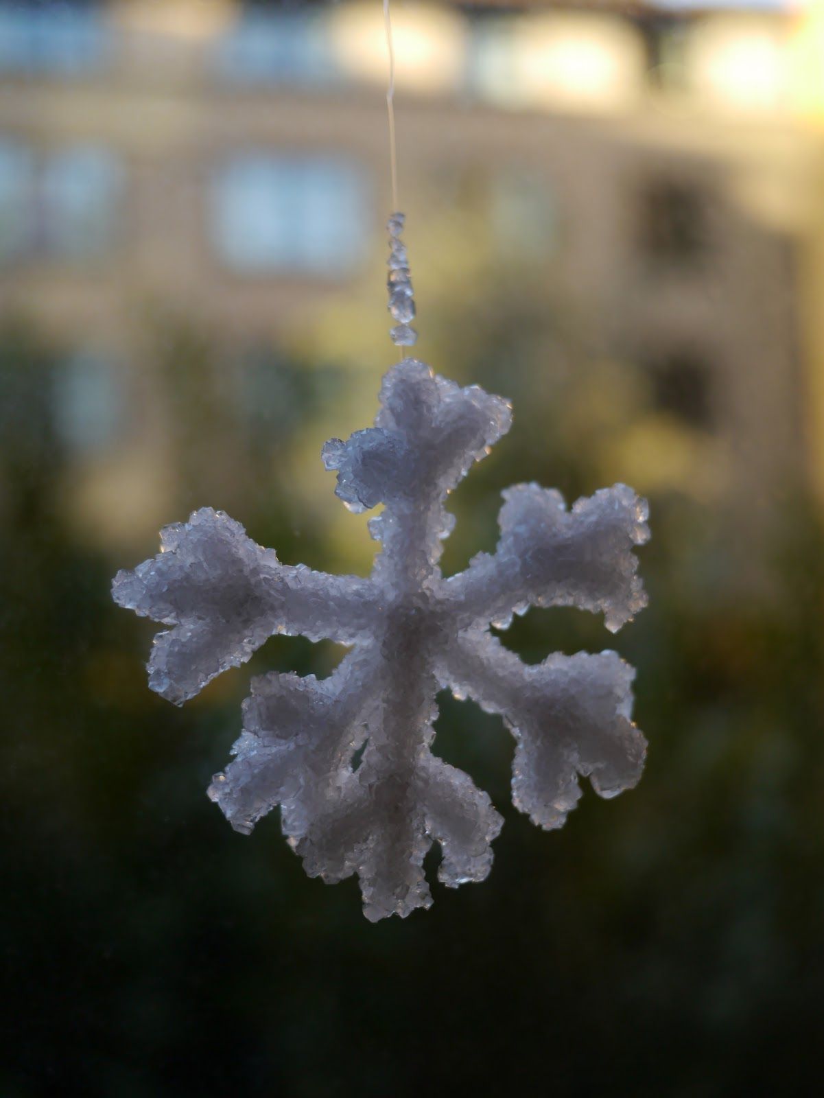 Little Hiccups Borax Crystal Snowflakes