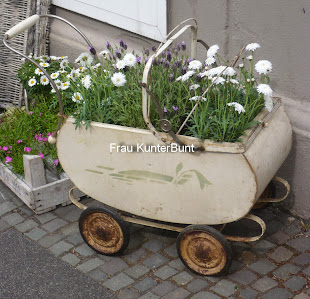 Pflanzen direkt aus Holland