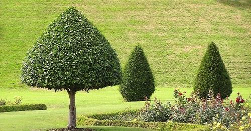 landzine perfect landscaping