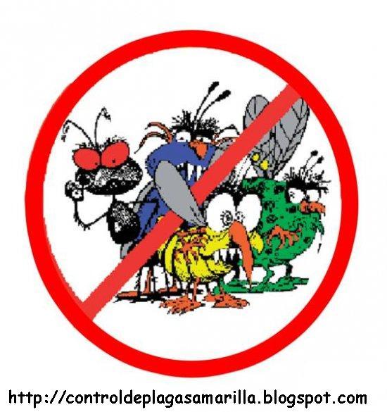 La salud en la escuela y mi hogar por jose andres padilla - Que hacer contra las cucarachas ...