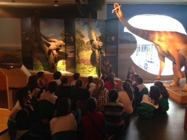 museu de paleontologia