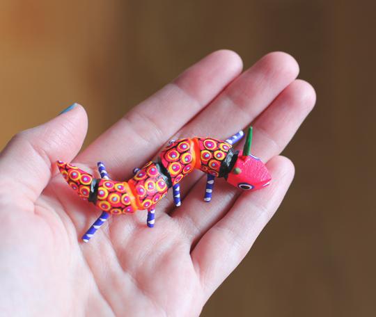 Oaxacan centipede snake