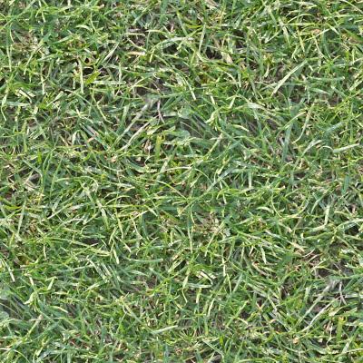 Seamless high res grass texture