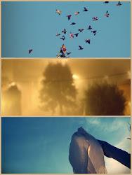 salta,ríe,baila vuela en la niebla