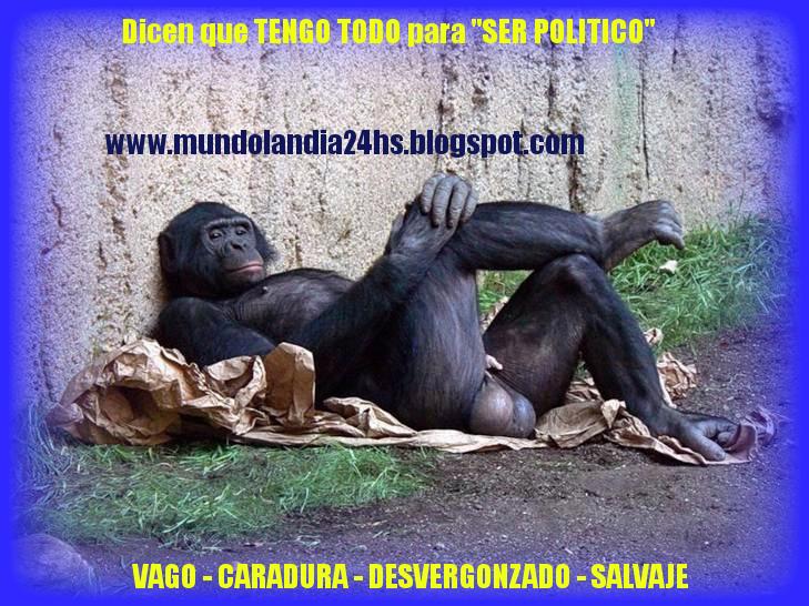 """"""" MI PRIMO"""" FUTURO CANDITATO POLITICO - Tiene todo el GLAMOUR que se necesita"""