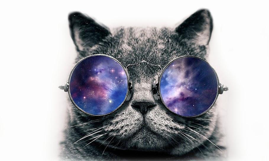Juoda katė kosmose