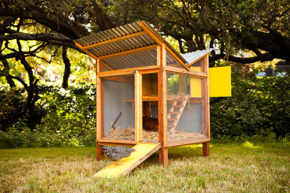 Chicken Coop Designs ...