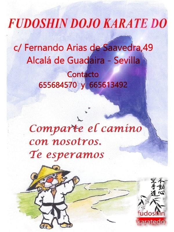 Contacto  655 68 45 70  y  665613492