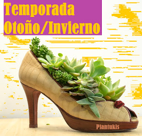 TEMPORADA OTOÑO/INVIERNO