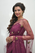 Hamsa Nandini at Bengal tiger audio-thumbnail-12