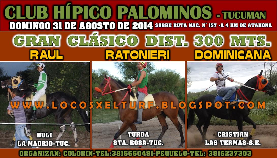 31-08-14-CLAS-HIP. PALOMINOS