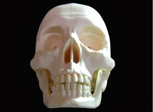 3D Printed Bones Are Saving a UK Hospital Thousands in Fees