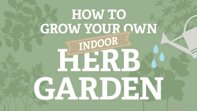 How To Grow Your Own Indoor Herb Garden Infographic Visualistan