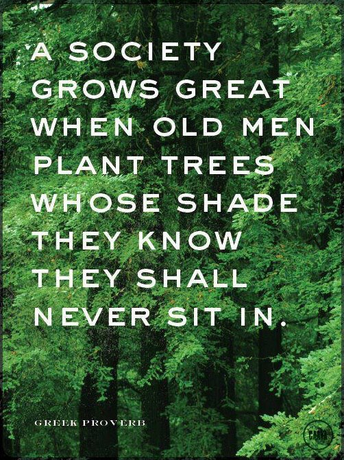 Plant Trees Under Whose Shade Quote : When old men plant trees whose shade they know shall never sit in