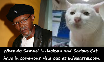 Samuel L. Jackson and Admin avatar on InfoBarrel (Serious Cat aka SRS Cat)