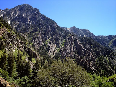 Cottonwood Canyon