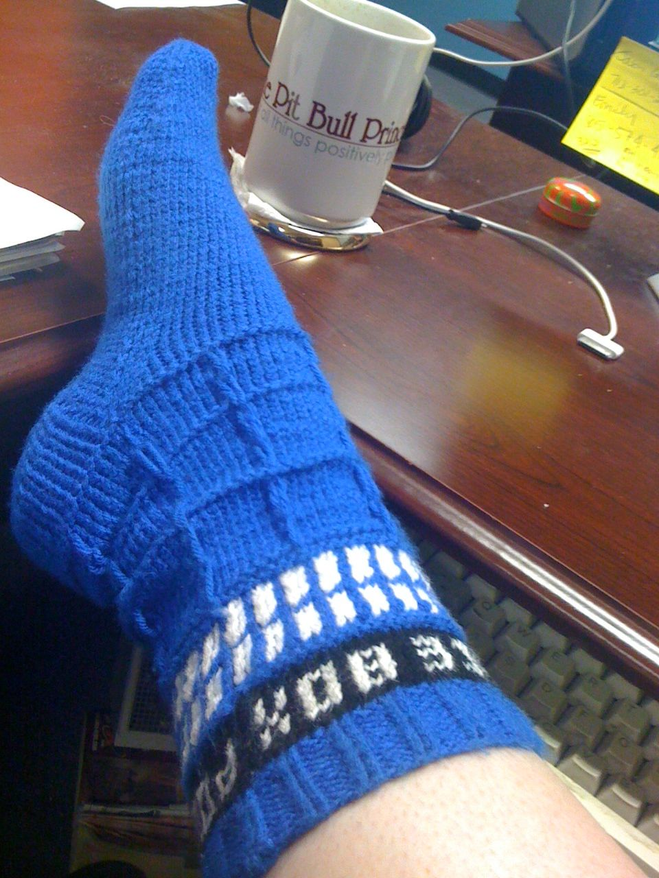 Muddy Paws & Puppy Kisses: TARDIS Socks