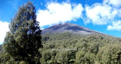 jalur pendakian gunung semeru