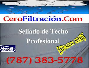 SELLADO DE TECHO, RPM Corp