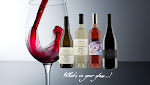 Join the Passionistas Wine Club