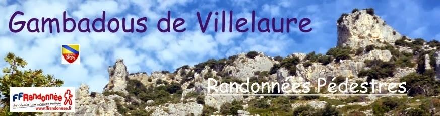 les Gambadous de Villelaure randonneurs