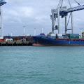 港,オークランド,NZ〈著作権フリー無料画像〉Free Stock Photos