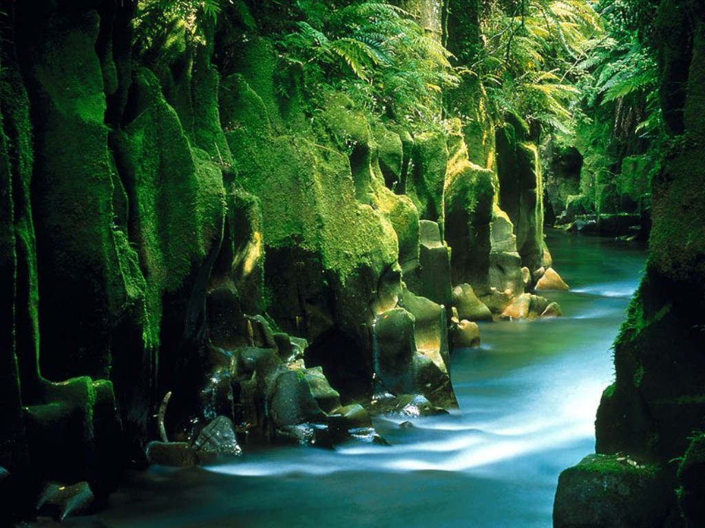 Sonja galloway new zealand wallpaper hd for Les paysages