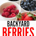 Backyard Berries - Free Kindle Non-Fiction