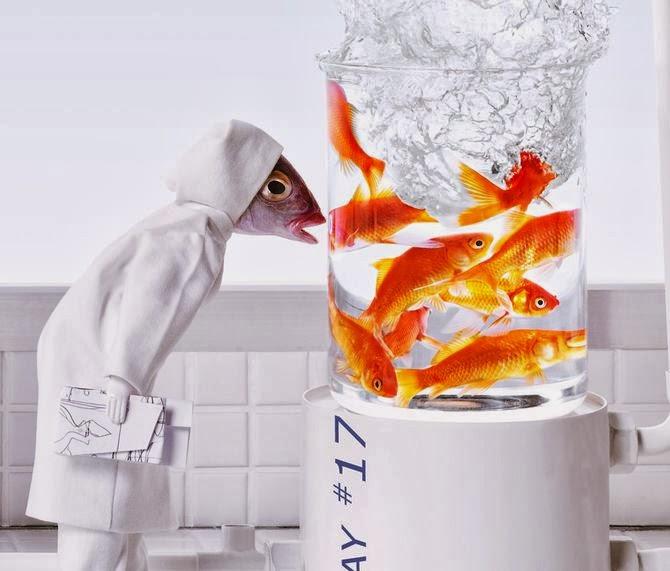 fish-clip-art