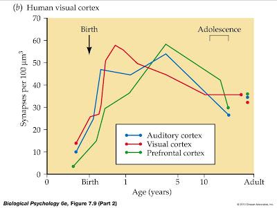 Improve concentration skills image 2