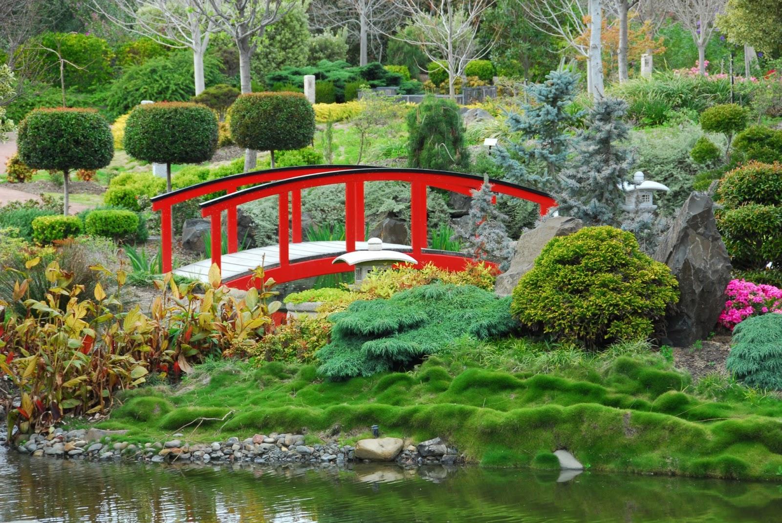 Banco de im genes jard n japon s con plantas flores y for Plantas pequenas para jardin