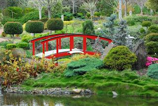 Jardín japonés con flores, plantas y un puente...