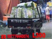 MITSUBISHI L300 STD